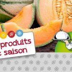 Produit de saison : le melon